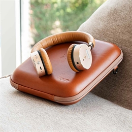 Sackit Woofit Headset & Carryit Etui, Golden